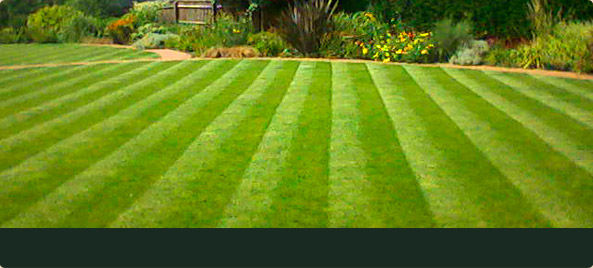 Jj garden services leicester landscape and commercial for Gardening services